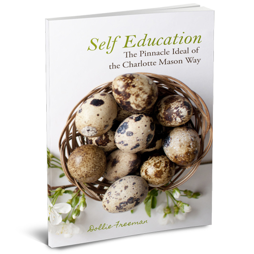 selfeducationgraphic